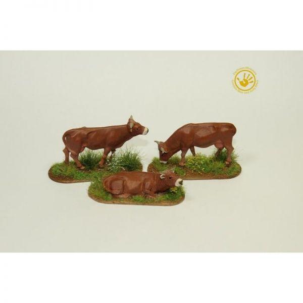 Kühe (3)