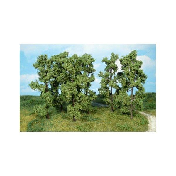 Diese 6 Bäume machen in kleinen Gruppen ordenlich was her.