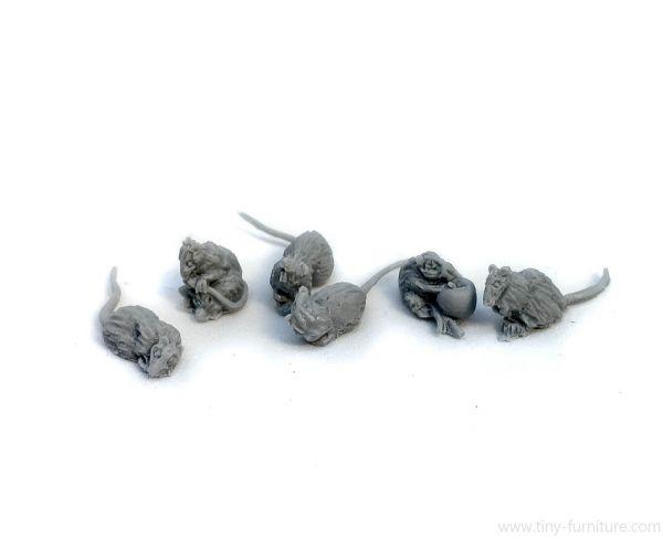 Six Rats / Sechs normalgroße Ratten