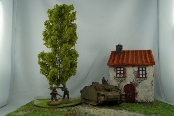 Hier ist die Birke im Vergleich mit Warlord Games 1/56 bzw. 28mm Miniaturen zu sehen