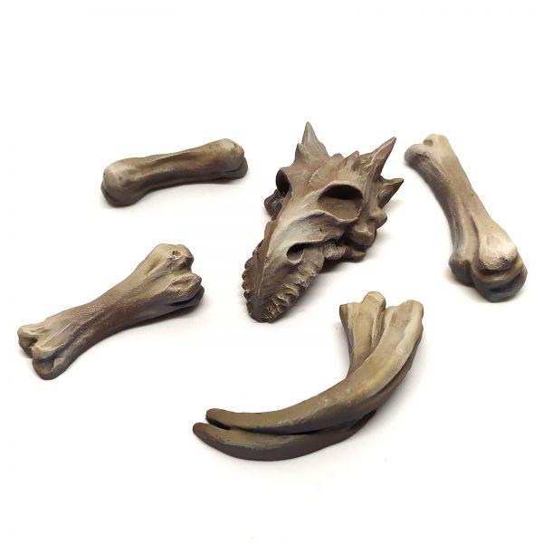 Dragon Bones and Skull / Drachenknochen und Drachenschädel