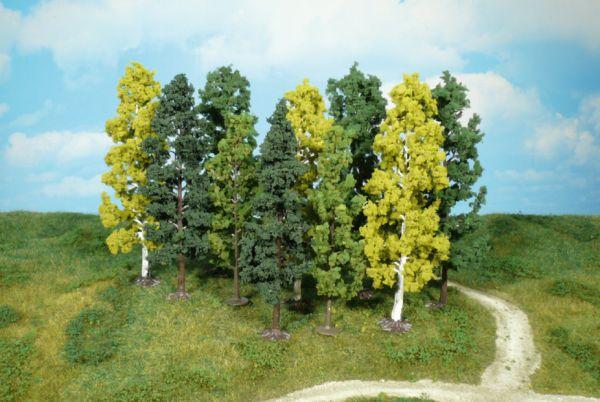 10 Bäume 14-18 cm