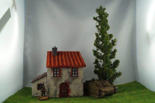 Pappeln sind schlanke hohe Bäume aus der Familie der Weiden.