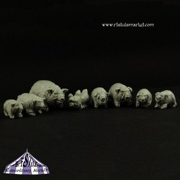 Hier ist die Ganze Schweinebande abgebildet. Die Muttersau, zwei mehrjährige und die Ferkel