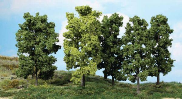 5 Bäume für viele Gelegenheiten.