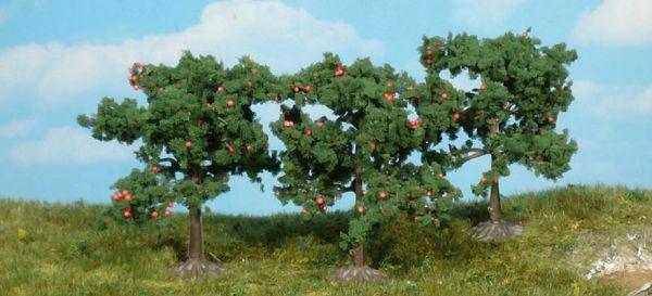 3 Apfelbäume 8cm von Heki