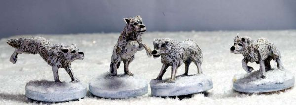Wolves / 4 Wölfe