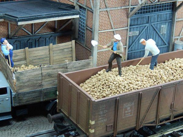 1:45 Kartoffeln, 150g