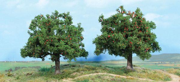 2 Apfelbäume 13 cm von Heki
