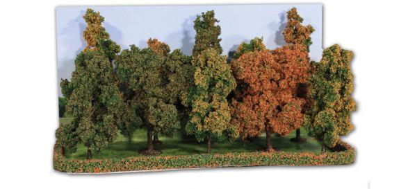 Herbstwald - 10 Herbstbäume 10 -14 cm hoch von Heki